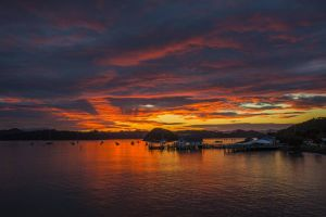 Sunrise over Paihia